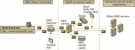 pc:laboratoare:understanding-dns-queries-and-lookups.jpg